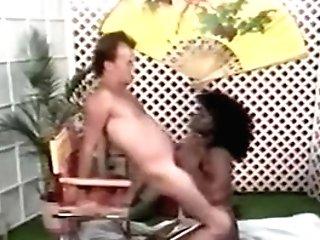 Antique Black Tits