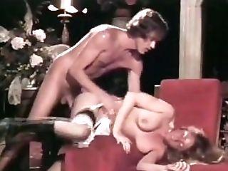 Retro Antique Big Trouser Snake Oral Job Cum-shot Facial Cumshot Underwear