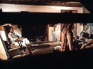 The Arrangement (1981)