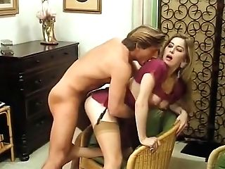 Sex In Nylons Videos