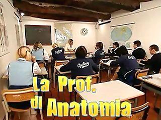 La Profesoressa Di Anatomia
