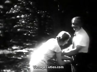 Stunning Bitch Has Joy in the Forest (1930s Antique)