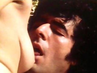 Swedish Erotica 290 - Erotic Exotic Machine Two (seka)