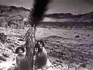 Desert Nymphs