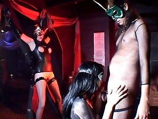 Kinky whores into restrain bondage banged