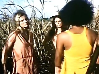 Pam Grier The Big Doll Palace Compilation