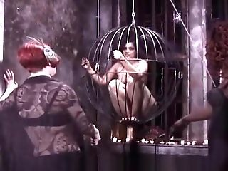 Two Pervy Mistresses Take It Out On A Encaged Black-haired Victim