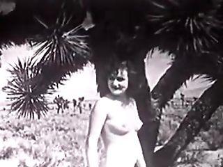Desert Nymphs (loyalsock)
